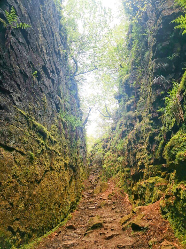 Beautiful photo of a narrow ravine on a virtual walk