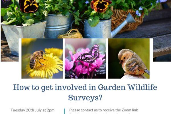 20th July Talk - Garden Wildlife Surveys